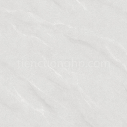 Gạch Granite Cửu Long CL 802