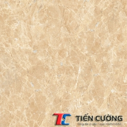 Gạch GRANITE ECO-S803