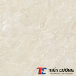 Gạch GRANITE ECO-S622