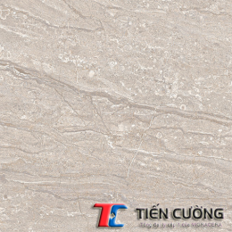 Gạch GRANITE ECO-824