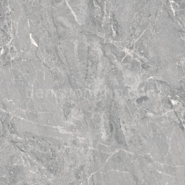 Gạch Granite Cửu Long CL 809