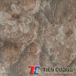 Gạch GRANITE ECO-S605