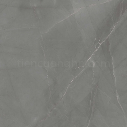 Gạch Granite Cửu Long CL 607