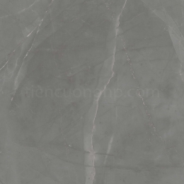 Gạch Granite Cửu Long CL 807