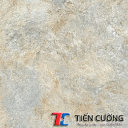 Gạch GRANITE ECO-822