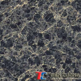 Gạch GRANITE ECO-626