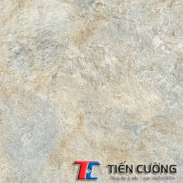 Gạch GRANITE ECO-622
